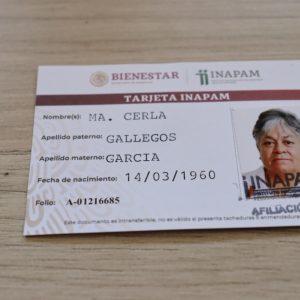 CUENTA DIF MUNICIPAL SAN PEDRO CON 200 CREDENCIALES DEL INAPAM